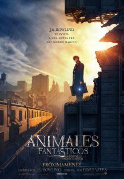 Animales Fantásticos y Dónde Encontrarlos | 18 noviembre